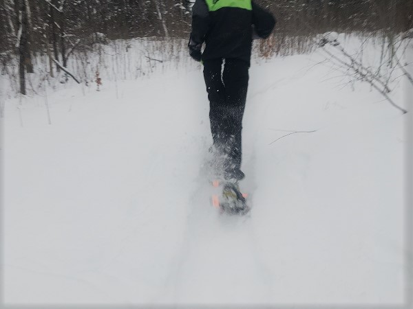 snowshoe running trails dion snowshoes